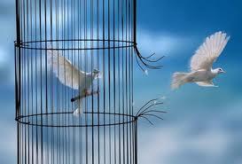 Penser sans interdits dans litterature poesie religion spirituel images5